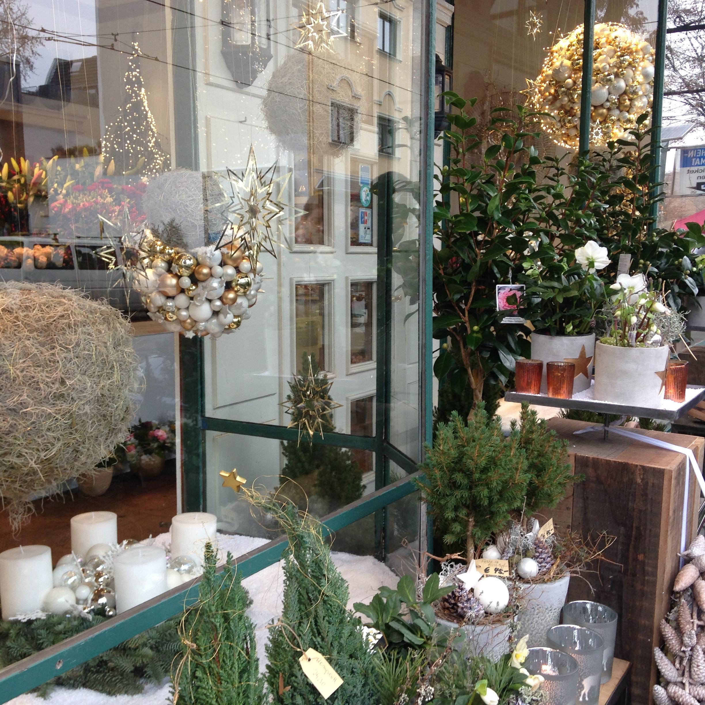Wintergarten Südstadt Florist